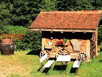 Ferienwohnungen-Urlaub-Schwarzwald-05